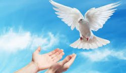 "2017-05-28,   ""Discerning God's Will Together"""
