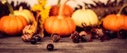 """2017-11-26,  """"Thankful for Family""""  - Harvest Offering Sunday"""